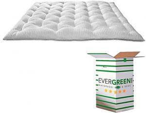 Evergreenweb DREAME