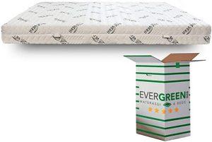 Evergreenweb LATEX SFOD